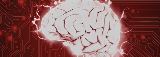 The Human Brain: The Worlds Most Powerful C.P.U